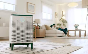 best air purifier for mold in basement